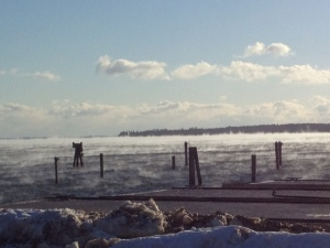 Artic Fog